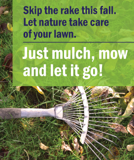 Mulch, Mow and Let it Go