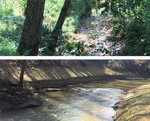 photo of Reedy River, before and after streambank revitalization